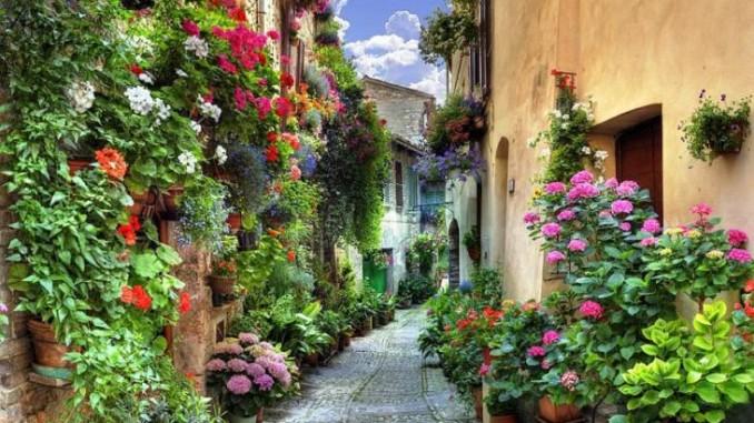 Borgo di Spello - vicoli Fioriti