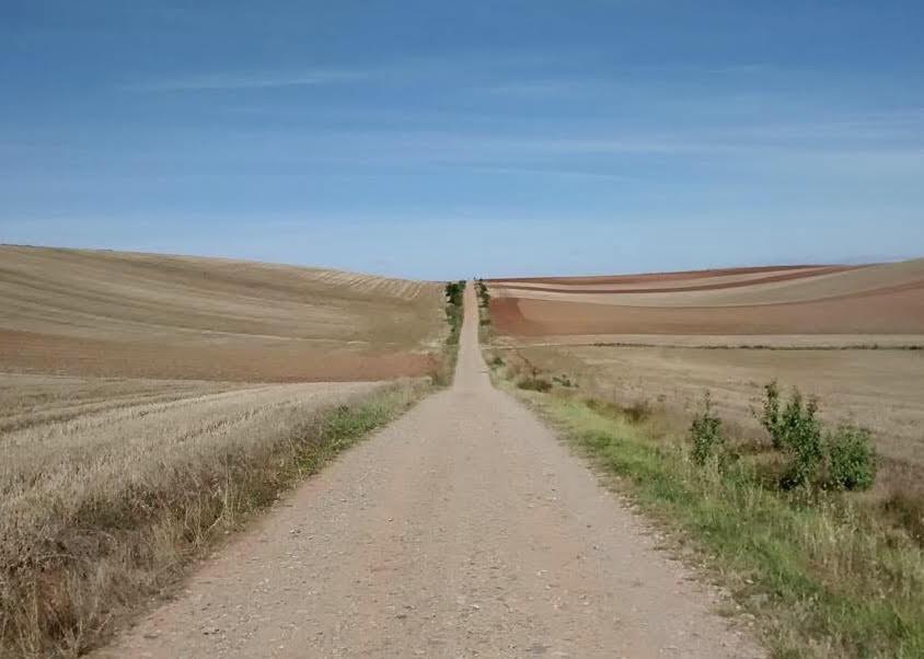 Viaggiare a piedi