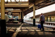 I cani possono viaggiare in treno?
