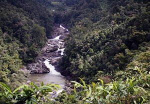 Parco nazionale di Ranomafana