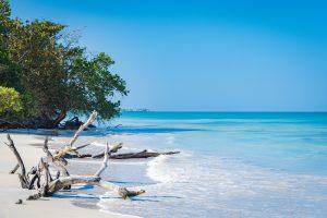 Quando visitare la Giamaica